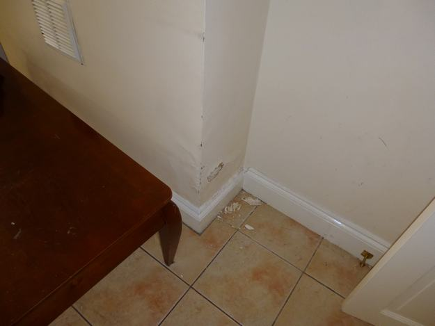 surface damage as a result of rising damp